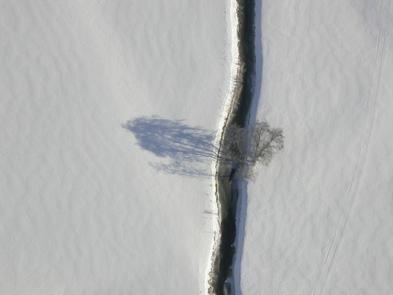 ballontreffen-alpen (4)