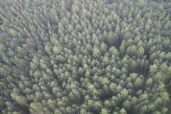 Fotos aus der Luft